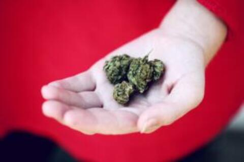 Cannabis Dispensaries: The Five Biggest Compliance Mistakes