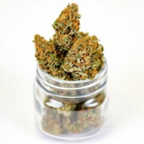 The Three Benefits of Cannabis Mystery Shopping You Need to Know