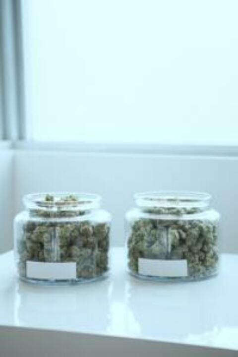 What You Need To Know About Improving Budtender Service